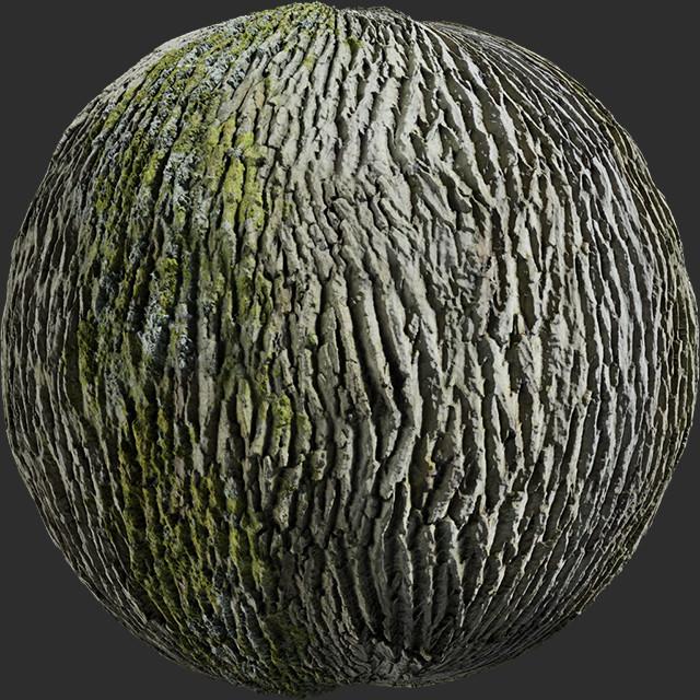 Yesil dokulu ağaç kabuğu